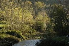 20111113_29735